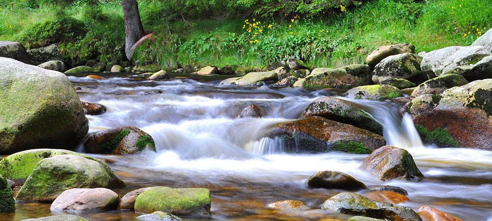 Flusslandschaft in Bayern